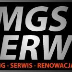 dmgs_logo_jpg