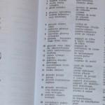 Ilustrowany słownik samochodowy (6a)