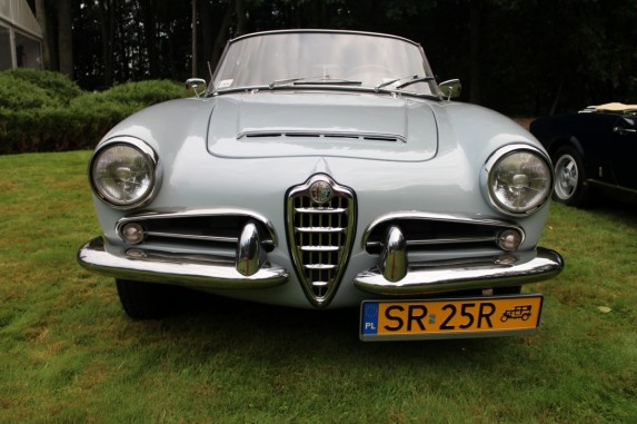 Forza Italia 2014 (7)