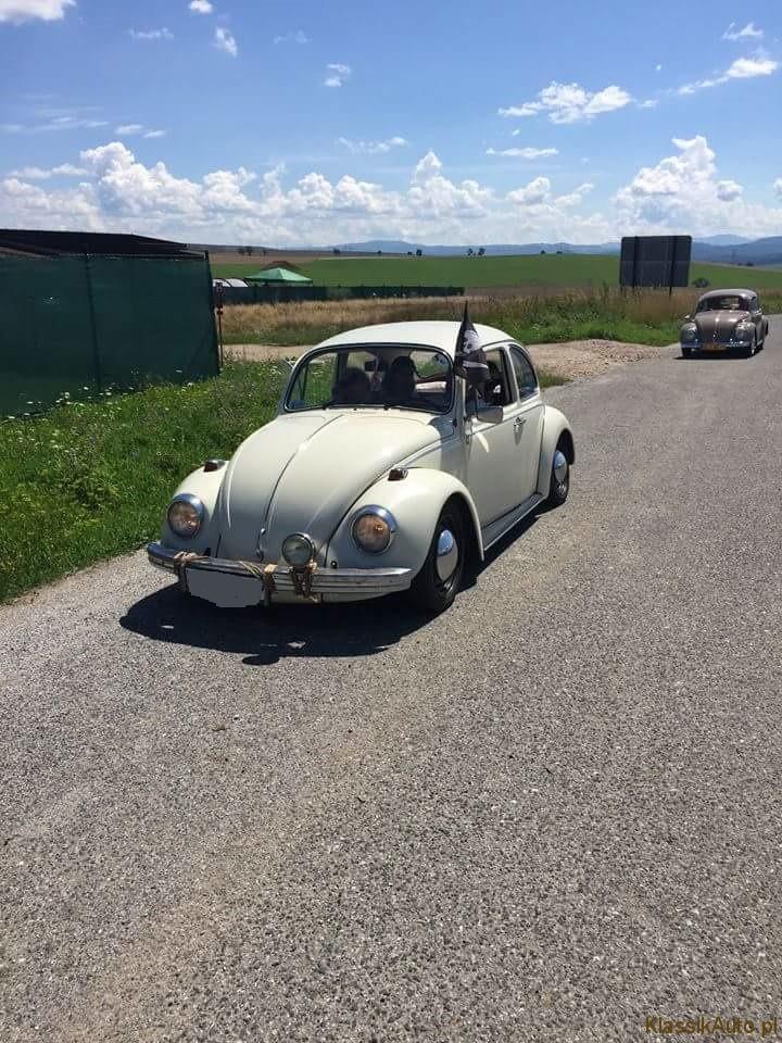 VW Garbus Natalia Bugajska (8)